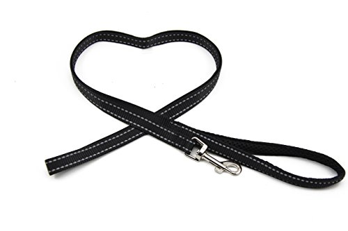 BIG SMILE PAW Reflective Dog Leash for
