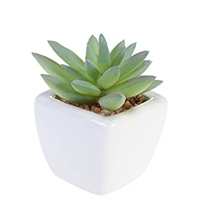WINOMO Modern Potted Green Artificial Succulent Plants Mini Fake Flower Pot for Indoor Outdoor Decor (Laughing Lotus) 3