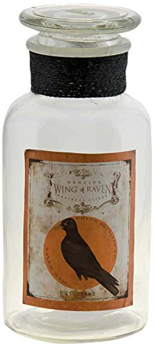 CWI Gifts Wing of Raven Glass Jar