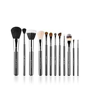Sigma Beauty Essential Kit Set of 12 Brushes CK001: Amazon.co.uk ...