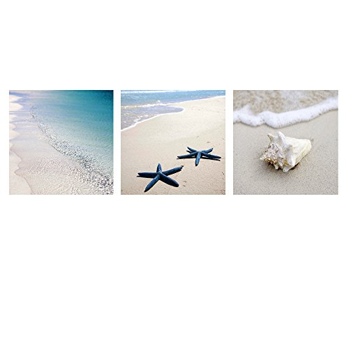 Seascape Canvas Print ,Framed,Water-proof,Seaside Starfish and Conch ,Blue Sea Canvas Wall Art Home Decor,Good Present (Starfish Wall Art)