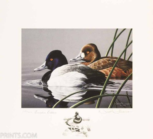 Neal Anderson - Lesser Scaup 1989-1991 Federal Duck Stamp Print Executive Ed Remarqued with Medallion & Mint Stamp