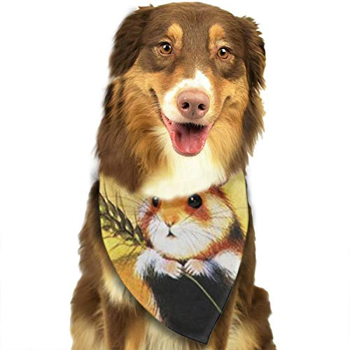 FRTSFLEE Dog Bandana Guinea Pig Scarves Accessories Decoration for Pet Cats and Puppies -