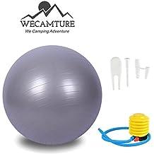 65cm Exercise ball,Balance Ball with Air Pump-Wecamture Anti-Burst Yoga ball for Gym Balance Fitness Pilates or Ball Chair (Sliver)