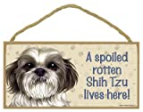 (SJT61967) A spoiled rotten Shih Tzu (puppy cut) lives here wood sign plaque 5