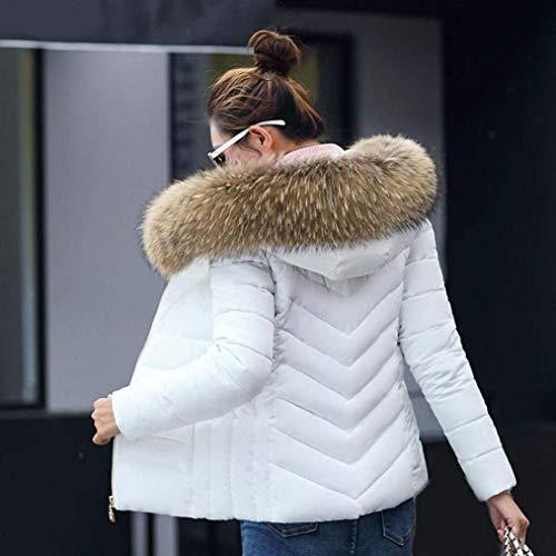 Giovane Monocromo Con Cerniera Corto Giacca Abbigliamento Lunga Moda Laterali Bianca Coat Manica Invernali Cappuccio Cappotto Tasche Trapuntata Donna PYqw7vw
