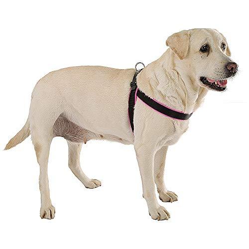 Peitoral Ferplast Agila Fluo Rosa e Preto Para Cães até 8kg - Tamanho 4