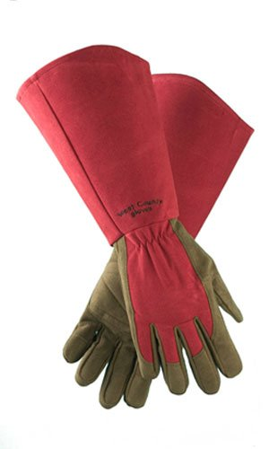 West County 054RS Gauntlet Rose Glove, Ruby, Small ()