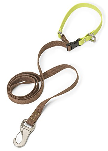 West Paw Jaunts Dog Leash with Comfort Grip, Small, Mocha - Granny Smith, Made in USA