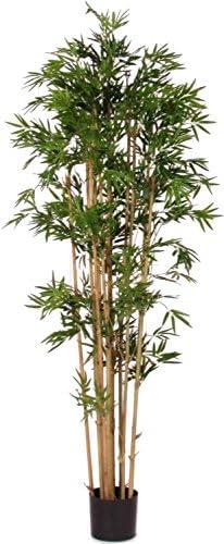 Alto 180 cm Albero Artificiale con Tronchi Veri da Arredo Interno NewGreen Bamboo Bambu Japanese