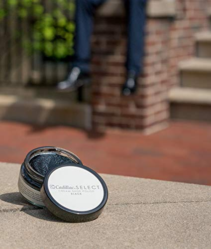 Select Premium Cream Shoe Polish