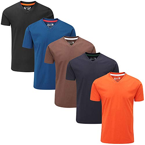 (Charles Wilson Men's 5 Pack Regular Fit Plain Lightweight V-Neck T-Shirt (Small, Dark Essentials 42))
