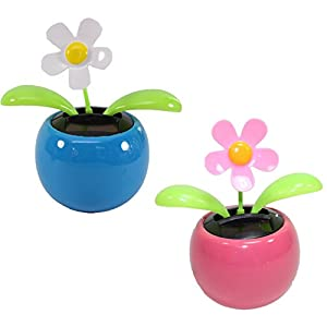 Set of 2 Dancing Flowers ~ 1 White 1 Pink Daisy in Assorted Colors Pots Solar Toy Car Dashboard Home Decor Birthday Congratulatory Easter Gift 10
