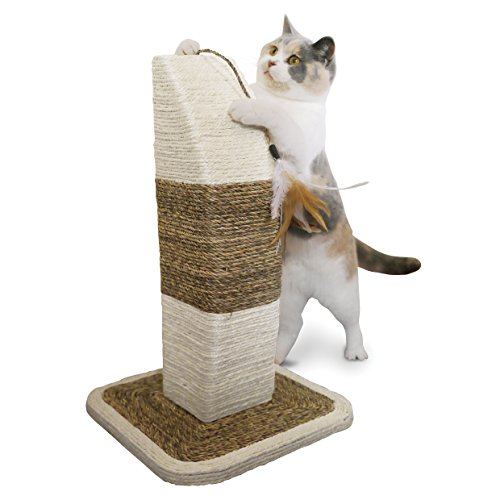 Rosewood-Natural-Cat-Scratcher