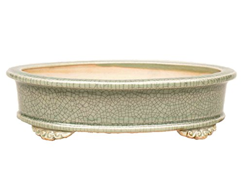 YUKIMONO Tokoname Eimei Oval Bonsai Pot in Celadon, 7.5-Inch