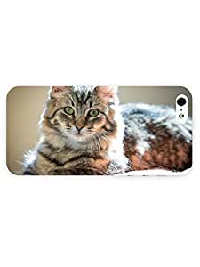 3d Full Wrap Case for iPhone 5/5s Animal Cute Cat23 by runtopwell