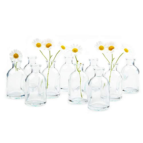 (Chive - Loft, Set of 10 Clear Tall Bottle 1.75