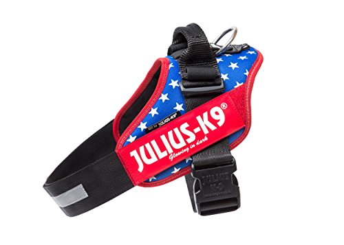 Americana Dog Harness - Julius-K9 IDC-Power Harness with Illuminated Velcro Patches, Ameri-Canis, Size: 2/71-96 cm/28-37.5