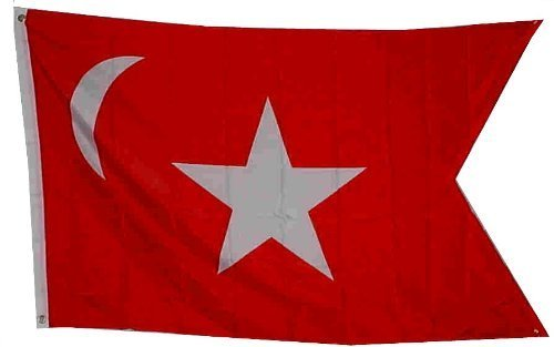 State Flag: South Carolina Secession 3'x5' Super Poly Outside Flag / Banner by FLAG DISTRIBUTOR