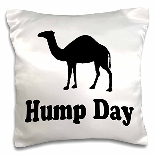 onepicebest Throw Pillow Covers with Words for Sofa Couch-Funny Quotes - Hump Day - 18x18 inch Pillow Case
