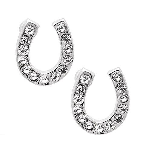 Spinningdaisy Silver Crystal Horseshoe Earrings