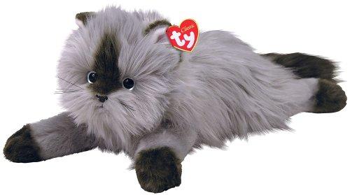 Ty Smokey - chat de l'Himalaya gris