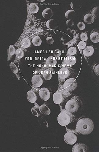 Pdf Entertainment Zoological Surrealism: The Nonhuman Cinema of Jean Painlevé