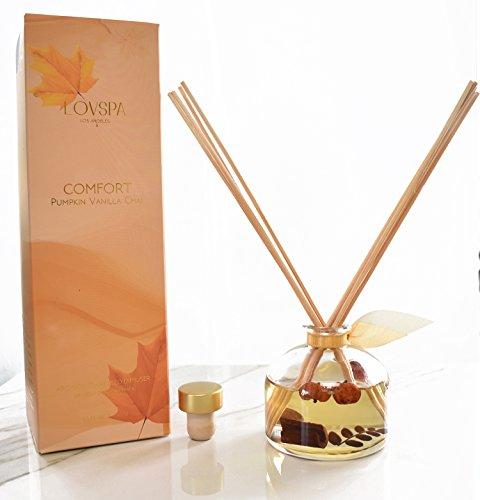 LOVSPA Pumpkin Vanilla Chai Reed Diffuser | Comfort Wild Pumpkin, Spicy Chai, Cardamom, Vanilla & Cinnamon Scented Oil with Sticks | Great Spiced Kitchen Scent Any Time of Year by LOVSPA