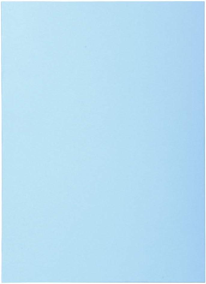Exacompta Super 60/Pack di 100/cartelline per A4/22/x 31/cm 22x31 verde chiaro