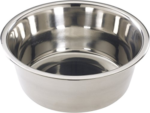 Ethical Stainless Steel Mirror Pet Dish
