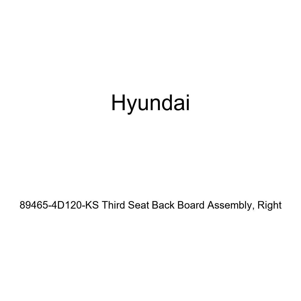 Genuine Hyundai 89465-4D120-KS Third Seat Back Board Assembly Right