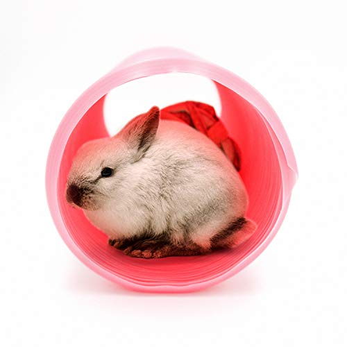 Small Animal Play Tunnel with 3 Pack Play Balls and Apple Sticks, Collapsible Plastic Guinea Pigs Tube, Fun Pet Tunnel Hideway for Guinea Pigs Chinchillas Rats and Dwarf Rabbits (OD-3.9inch)