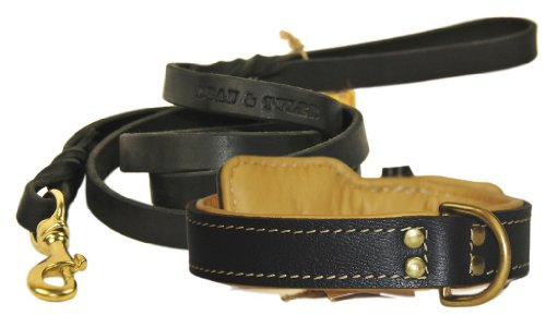 """Dean and Tyler Bundle – One """"Italian Tailor"""" Collar Brown Padding, 34″ by 1-1/2″ With One Matching """"Love To Walk"""" Leash, 6 FT Brass Snap Hook – Black"""