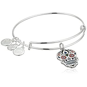 Alex and Ani Color Infusion, Calavera EWB Shiny Silver Bangle Bracelet