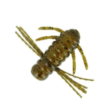 バークレイ 青木虫