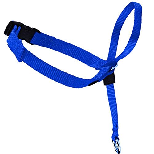 Nylon Dog Head Collar Pet Gentle Leader No Pain No Pull Control Training Leash Adjustable Harness Halter Training Nose Reigns Blue S