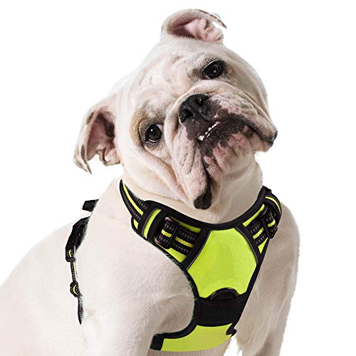 Eagloo Dog Harness No Pull, Walking Pet Harness with 2 Metal Rings & Handle Adjustable Reflective Breathable Oxford Soft Padded Easy Control Front Clip Vest Harness Outdoor for X-Large Dogs Green (Best Harness For English Bulldog)