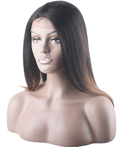 X-TRESS Straight Lace Front Wigs With Baby Hair 20 Inch Ombre Brown Wigs Synthetic Heat Resistant Glueless Lace Wig Long Straight Fiber Hair Wigs For Women (TT2/30 Ombre Brown) ()