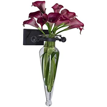 Danya B MC016 Decorative Wall Mount Amphora Glass Flower Vase on Iron Sconce with Finials - Clear - Vase Wall Décor