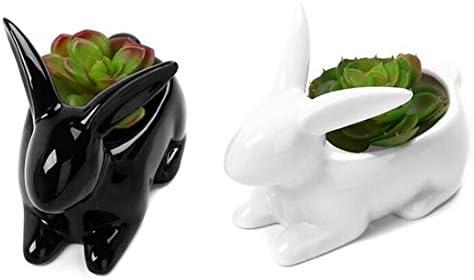 Decorative White and Black Bunny Rabbit Design Mini Ceramic Plant Flower Pot Succulent Planter Set of 2