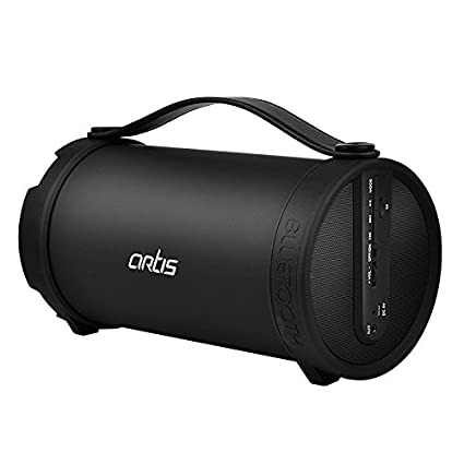Artis Bt306 Wireless Portable Bluetooth Speaker With Fm Amazon In