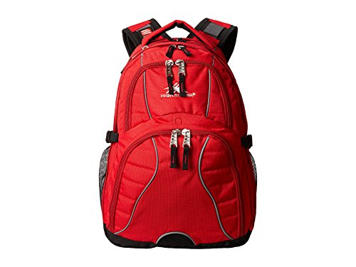 High Sierra Swerve Laptop Backpack, 17-inch Laptop Backpack for High School or College ()