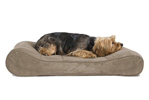 FurHaven Pet Dog Bed | Orthopedic Microvelvet Luxe Lounger Pet Bed for Dogs & Cats, Clay, Medium