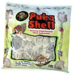 puka-shell-natural-pearlescent-shell-substrate