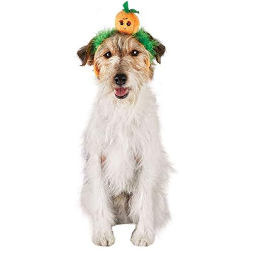 Bootique Halloween Pumpkin Swirl Headband Headpiece Dog Light