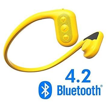 Tayogo IPX8 MP3 conducción ósea auriculares impermeable FM radio 8 GB Bluetooth 4.2 podómetro APP submarina