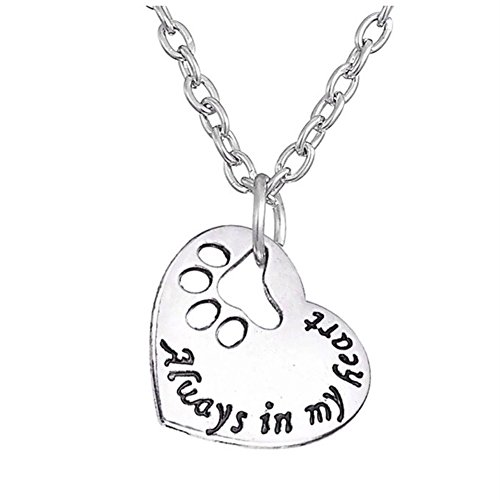 Ginger Lyne Collection Always in My Heart Dog Paw Print Heart Stainless Steel Non-Tarnish Necklace (Stainless Steel Collection Pendant)