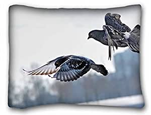 Custom Characteristic ( Birds Animal Bird ) Custom Zippered Pillow Case 20x26 inches(one sides) from Surprise you suitable for Queen-bed