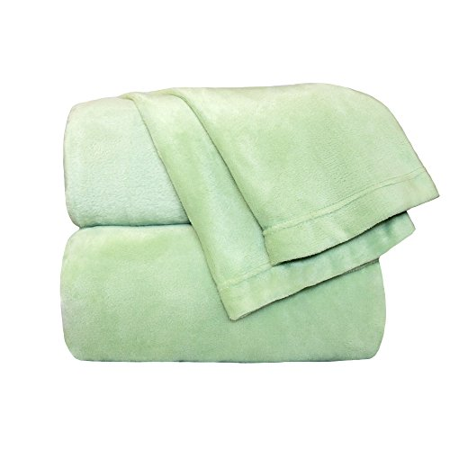 Cozy Fleece Comfort Collection Velvet Plush Sheet Set, King, Sage, 1 Sheet Set
