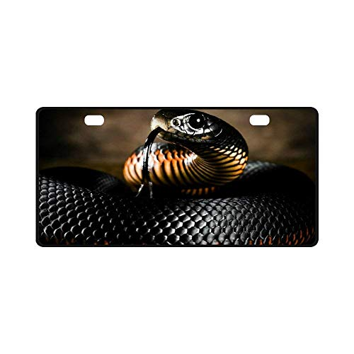 (EHAKB License Plate Black Mamba Snake Pattern Metal Auto Car Tag 11.8